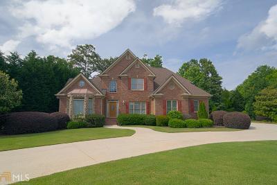 Single Family Home New: 675 Chestnut Walk Pl