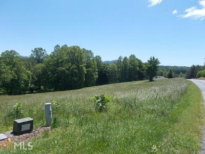 Blairsville Residential Lots & Land New: Owen Glen Drive #Lot 4