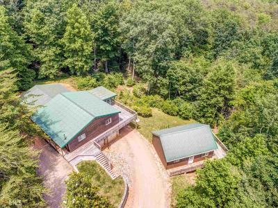 Ellijay Single Family Home New: 414 Can Town Rd