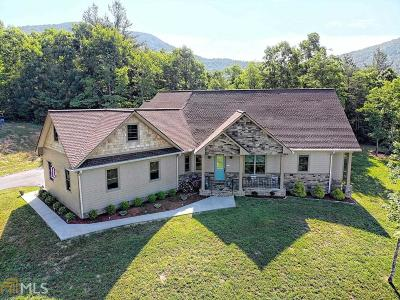 Towns County Single Family Home For Sale: 11 Nicks Path