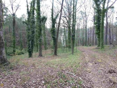 Residential Lots & Land For Sale: Memphis Ln