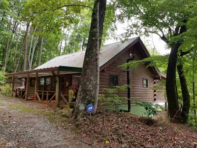Sautee Nacoochee Single Family Home For Sale: 2904 Duncan Bridge Rd