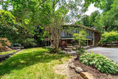 Hiawassee Single Family Home For Sale: 265 Omega Way