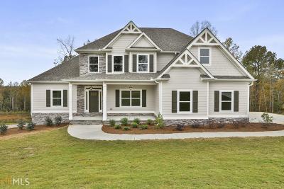 Newnan Single Family Home New: Sparrow Ct #Lot 166