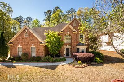 Snellville Single Family Home New: 911 Blue Sky Ridge