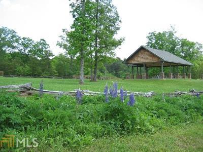 Dawsonville Residential Lots & Land For Sale: 14 Fern Park Dr