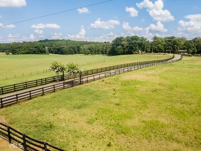 Walton County Single Family Home For Sale: 2989 Ike Stone Rd
