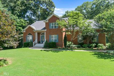 McDonough Single Family Home New: 230 McGarity Dr #541