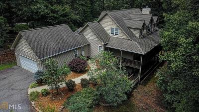 Blairsville Single Family Home New: 100 Wildwood Brook