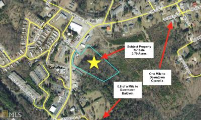 Habersham County Commercial For Sale: 112 S Main St