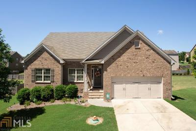Braselton Single Family Home For Sale: 2524 Olney Falls Dr