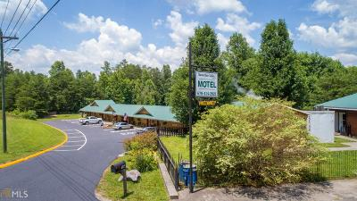 Habersham County Commercial For Sale: 6725 Highway 17