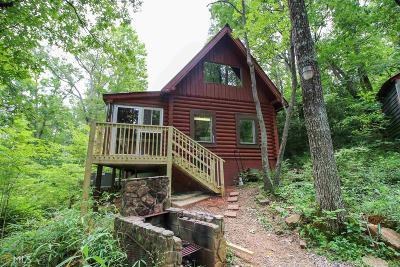 Dahlonega Single Family Home For Sale: 657 Rock Chimney Ln