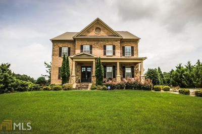 Tyrone Single Family Home For Sale: 293 Park Haven Ln