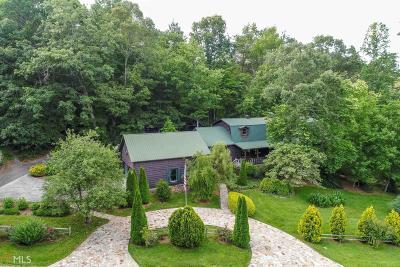 Rabun County Single Family Home For Sale: 259 Eagle Chase Cir