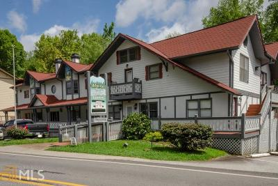 White County Commercial For Sale: 892 Edelweiss St