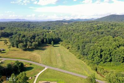 Lumpkin County Farm For Sale: 1403 Emory Stephens Rd