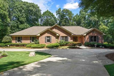 Stockbridge Single Family Home For Sale: 255 Northmill Pkwy