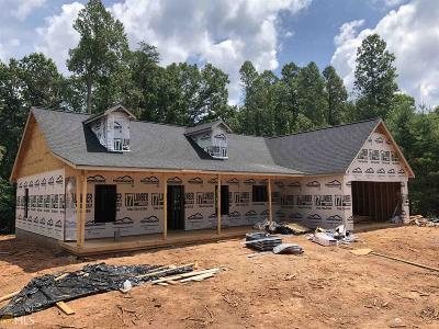 Clarkesville Single Family Home New: 10460 Highway 197 N