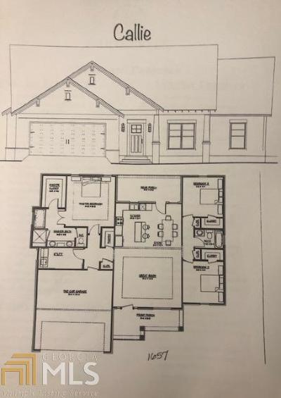 Paulding County Single Family Home New: 520 Brown Rd