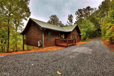 Ellijay Single Family Home For Sale: 144 Squirrel Hunting Rd