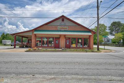 Rabun County Commercial For Sale: 3251 Old 441 S