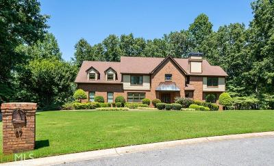 Powder Springs Single Family Home For Sale: 87 Old Mountain Pl