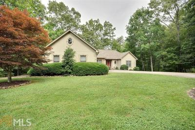 Towns County Single Family Home For Sale: 4219 Asheland Overlook
