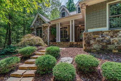 Ellijay Single Family Home For Sale: 175 N Harris Creek Dr