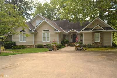 Lagrange Single Family Home For Sale: 4973 Greenville Rd