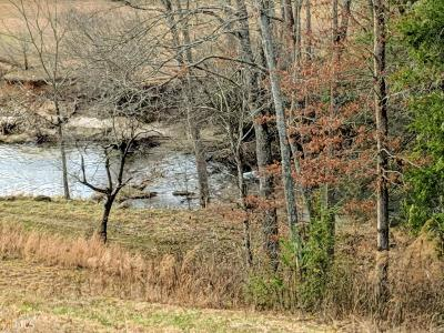 Blairsville Residential Lots & Land For Sale: Riverside On Lake Nottely #Lot 53