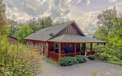 Blairsville Single Family Home For Sale: 534 Choestoe Trl