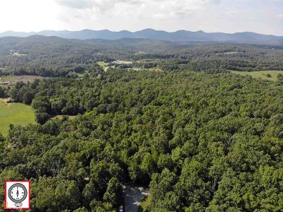 Blairsville Residential Lots & Land For Sale: Dean Gap Rd #41 Ac