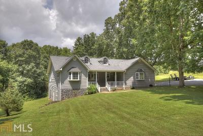 Fannin County Single Family Home New: 362 Old Dial Rd