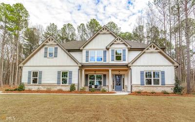 Newnan Single Family Home For Sale: 883 Jim Starr Rd #10