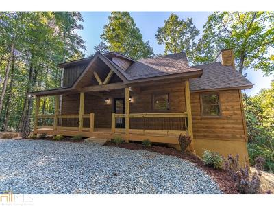 Gilmer County Single Family Home For Sale: 156 Etowah Dr