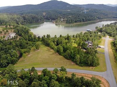 Blairsville Residential Lots & Land New: 91 Northshore Lot