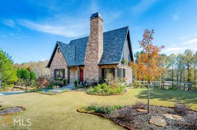 Roswell Single Family Home New: New Mountain Park Rd