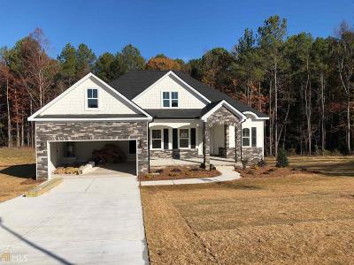 Henry County Single Family Home New: 138 Gingers Way #10