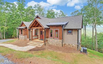 Fannin County Single Family Home New: 370 High Ridge Road Lt 8