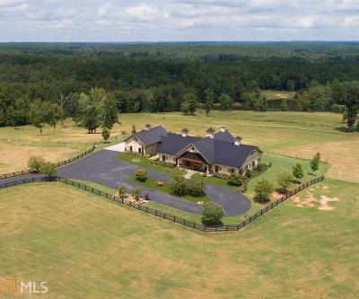 Greensboro Single Family Home For Sale: 1351 Gray Horse Rd