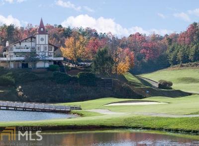 Helen Residential Lots & Land For Sale: International Village