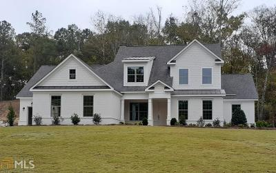 Paulding County Single Family Home New: 28 Vandiver Ct