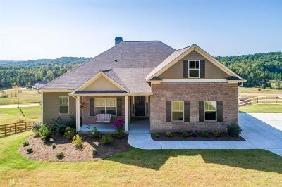 Lumpkin County Single Family Home New: 253 Odgers Trl