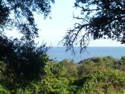 Jekyll Island Single Family Home For Sale: 1175 N Beachview Dr., #290 #290