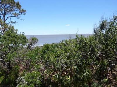 Jekyll Island Single Family Home For Sale: 1175 N Beachview Drive, Unit 479 #479