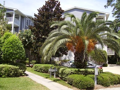 St. Simons Island GA Single Family Home For Sale: $410,500