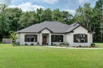 Brunswick Single Family Home For Sale: 149 Michigan Way