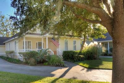 St. Simons Island Single Family Home For Sale: 413 Colley Lane