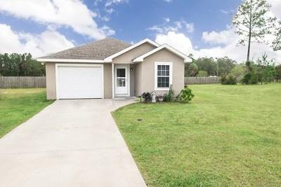 Brunswick Single Family Home For Sale: 164 Winstead Drive